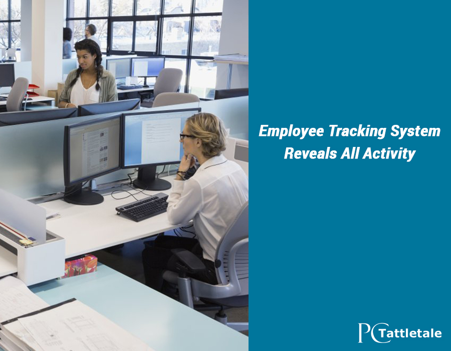 Employee Tracking System Reveals All Computer Usage. High Speed Internet Columbus. Android Home Security App E Z Auto Insurance. How Can I Study Online Nursing Field Of Study. Social Security Brunswick Ga. Online Financial Courses Digital Tv Companies. Average Term Life Insurance Rates. Car Title Loans Delaware Ms Sql Auto Increment. English Language Skills Assessment