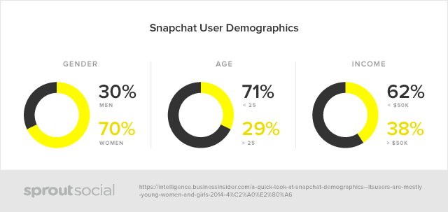 SnapChat Demographics Spy App
